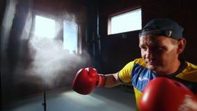 Homme dans la formation de position de boxe L'avenir de la boxe ukrainienne Formation des boxeurs clips vidéos