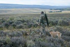 Homme dans le camouflage de champ avec le fusil et le chien de chasse photographie stock libre de droits