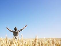 Homme dans le domaine de blé avec des bras tendus Photos stock
