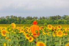 Homme dans le domaine de tournesols Photo stock