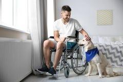 Homme dans le fauteuil roulant avec le chien de service Images stock