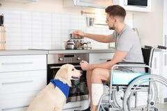 Homme dans le fauteuil roulant faisant cuire avec le chien de service photo libre de droits