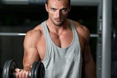 Homme dans le gymnase exerçant le biceps avec des haltères Photo stock