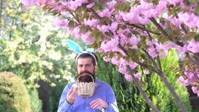 Homme dans un lapin de Pâques de costume avec des oreilles et des oeufs sur le fond de floraison de nature Lapin de port étonné d banque de vidéos