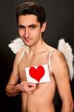 Homme de charme avec les ailes blanches. Images libres de droits