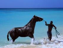 homme de cheval image stock