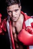 Homme de combattant de boxe image stock