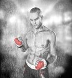 Homme de combattant d'arts martiaux illustration libre de droits