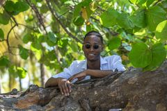 Homme de couleur sur l'arbre images stock