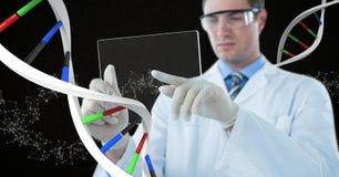 Homme de docteur agissant l'un sur l'autre avec le brin d'ADN 3D Photos libres de droits