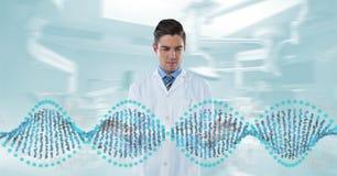 Homme de docteur agissant l'un sur l'autre avec le brin d'ADN 3D Photos stock