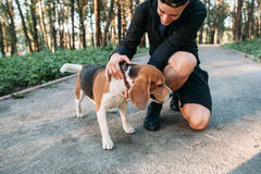 Homme de forme physique dans les vêtements de sport avec son chien dans la forêt Photos stock