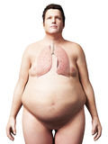 Homme de poids excessif - poumon Images libres de droits