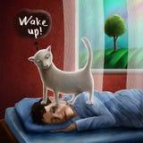 Homme de sommeil se réveillant de chat pendant le matin Photographie stock