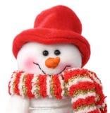 Homme de sourire de neige photographie stock libre de droits