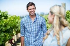 Homme de sourire regardant la femme dans le vignoble Image libre de droits