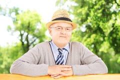 Homme de sourire supérieur sur un banc en bois posant en parc Photographie stock libre de droits