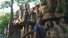 Homme de touristes de vue arrière marchant en parc, appréciant la belle vue, loisirs, voyage, aventure banque de vidéos