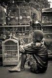 Homme des marchés d'oiseau de Malang, Indonésie image stock