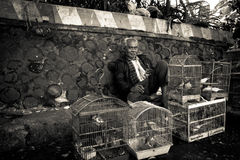 Homme des marchés d'oiseau de Malang, Indonésie photographie stock libre de droits