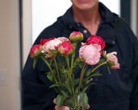 Homme donnant le vase de pivoines Photo stock