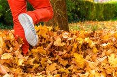 Homme donnant un coup de pied des feuilles d'automne jaunies Photo stock