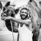 Homme du Ràjasthàn avec son chameau Photographie stock