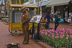 Homme en bronze Photos libres de droits