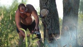 Homme en verres avec la tronçonneuse sciant un arbre sec banque de vidéos