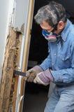 Homme enlevant le bois endommagé par termite du mur images stock