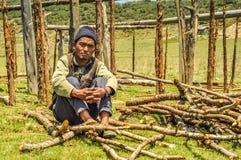 Homme et branches au Népal Image libre de droits