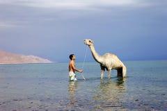 Homme et chameau Image libre de droits