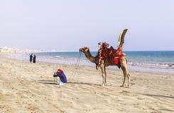 Homme et chameaux dans la Karachi Photo libre de droits