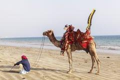 Homme et chameaux dans la Karachi Photographie stock