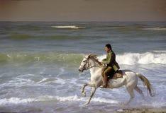 Homme et cheval photo stock