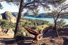 Homme et chien d'envie de voyager détendant à l'hamac en montagnes Images stock