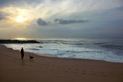 Homme et chien marchant le long de la plage Photo stock