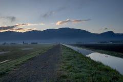 Homme et chien marchant sur le passage couvert rural le long de l'eau pendant le lever de soleil images libres de droits