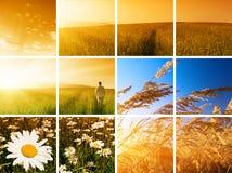 Homme et coucher du soleil image libre de droits