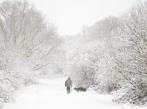 Homme et crabot dans la neige Photo stock