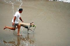 Homme et crabot sur la plage Image stock