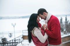 Homme et femme étreignant en parc couvert de neige Photo stock
