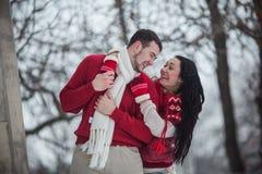 Homme et femme étreignant en parc couvert de neige Image libre de droits
