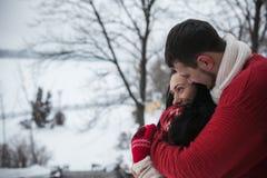 Homme et femme étreignant en parc couvert de neige Photos stock
