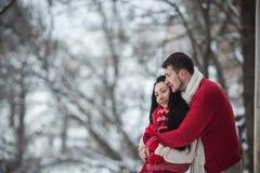 Homme et femme étreignant en parc couvert de neige images stock