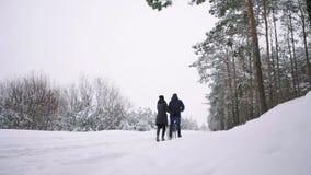 Homme et femme aimants marchant avec le costaud sibérien dans la forêt d'hiver souriant et regardant l'un l'autre mouvement lent  banque de vidéos