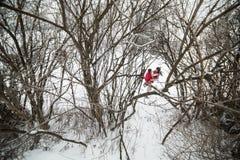 Homme et femme ayant l'amusement dans le parc couvert de neige Photographie stock