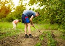 Homme et femme, creusant et pellant dans le printemps de jardin photographie stock