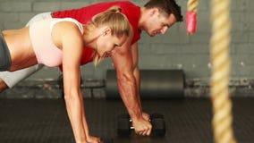 Homme et femme de forme physique employant des dumbells dans la formation banque de vidéos