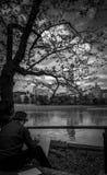 Homme et le lac Photo stock